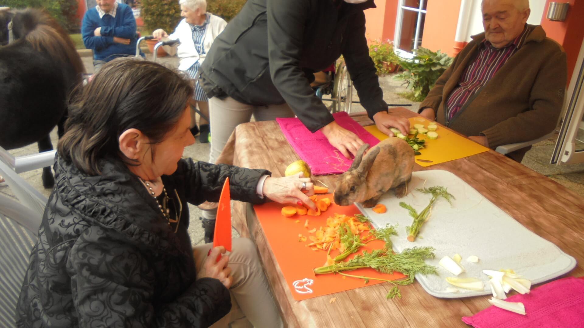 Atelier médiation animale - le 15 octobre