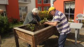 Atelier jardinage - le 26 août